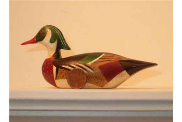 Cape Cod Wood Duck
